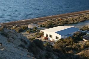 Whale Camp