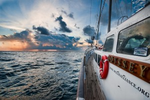 Odyssey Gulf Sunset Window - Photo by Eliza Muirhead