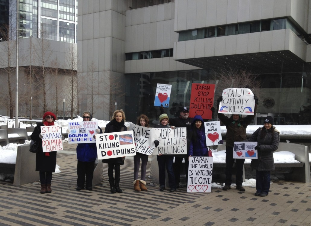 Taiji protest in Boston