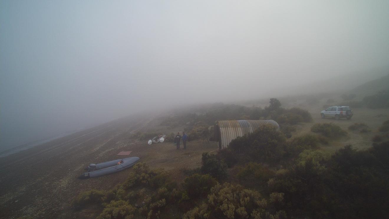 Fog at Camp