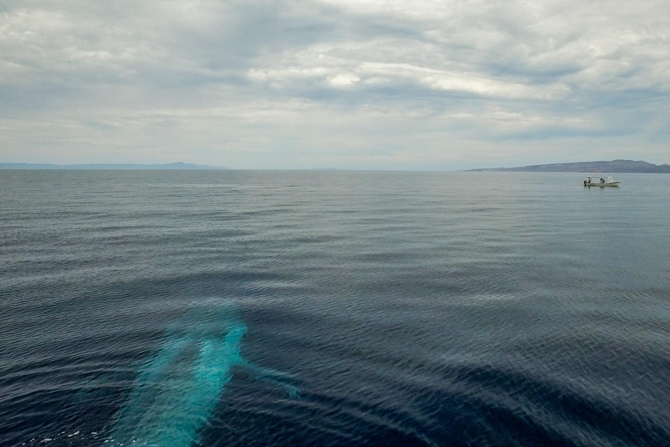 Blue body & boat